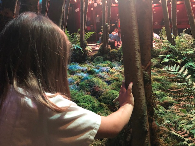 Year 4 visit the Egg to explore a Forest of Imagination & Egg collaboration: The Living Tree